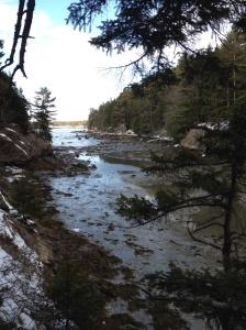 Low tide at the Audubon Sanctuary next door